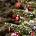 christmas-bauble-1016680